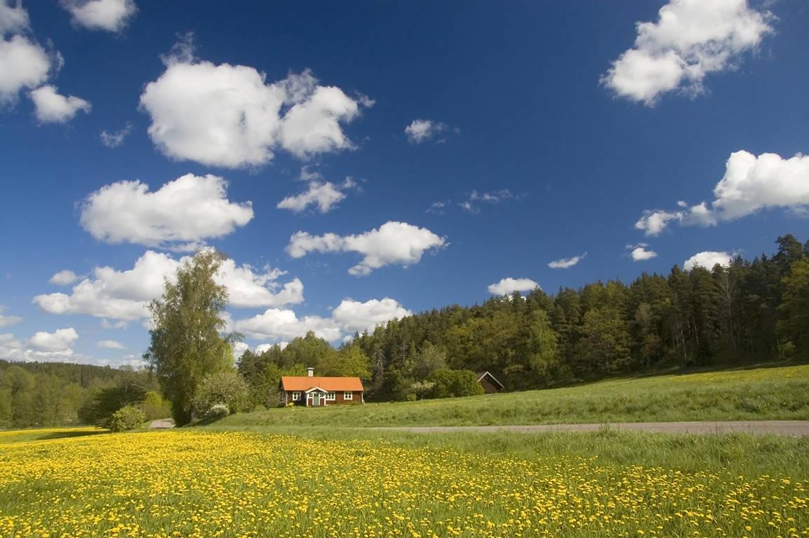 Rood huisje in het landschap