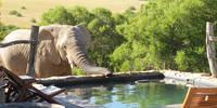 13-daagse fly-drive inclusief huurauto Pragtig Suid-Afrika