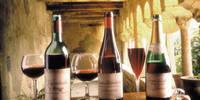 8-daagse autorondreis Gastronomisch Toscane