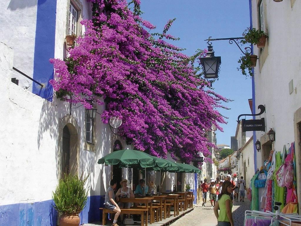 8-daagse autorondreis Ontdek Portugal