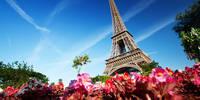 4-daagse busreis Parijs