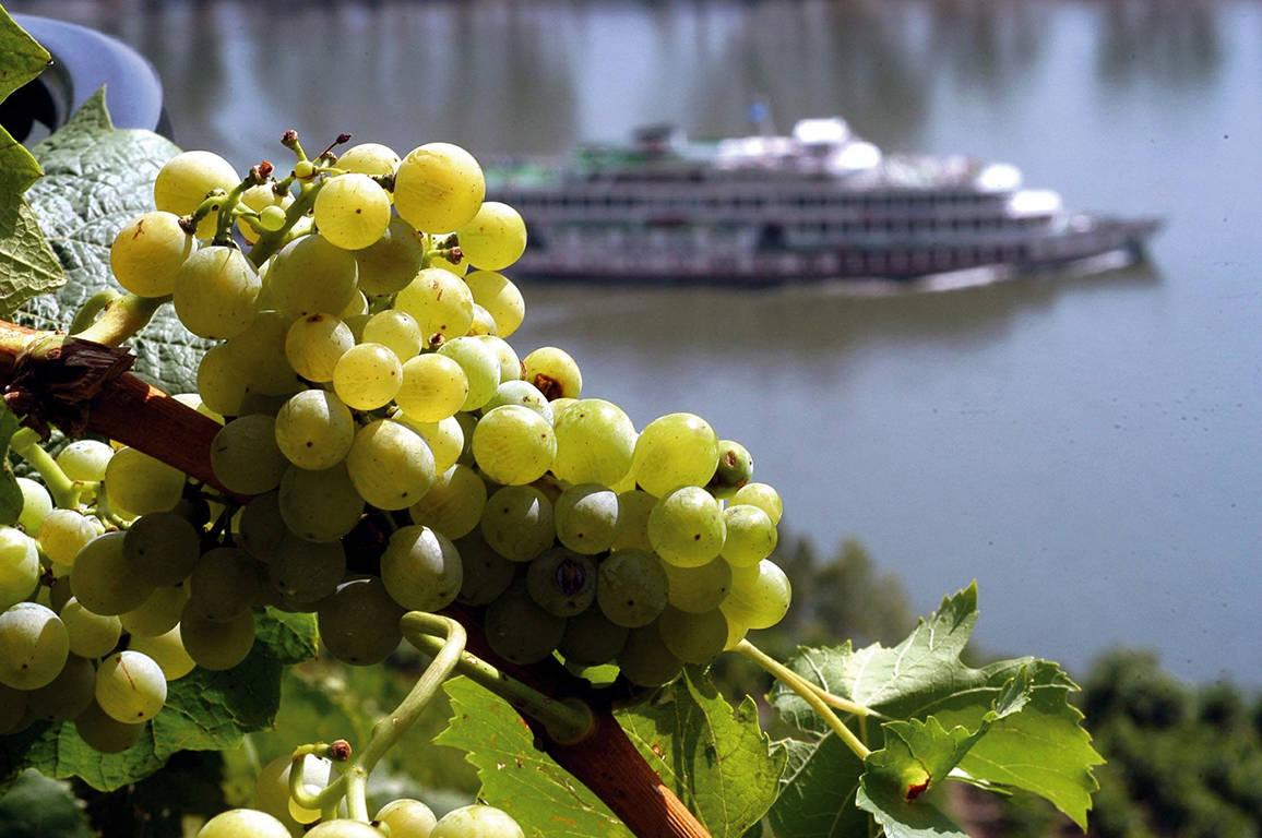 8-daagse cruise Rijn en Wijn met ms Serenade I