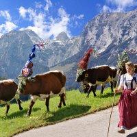 13-daagse autorondreis De mooiste Alpenpassen